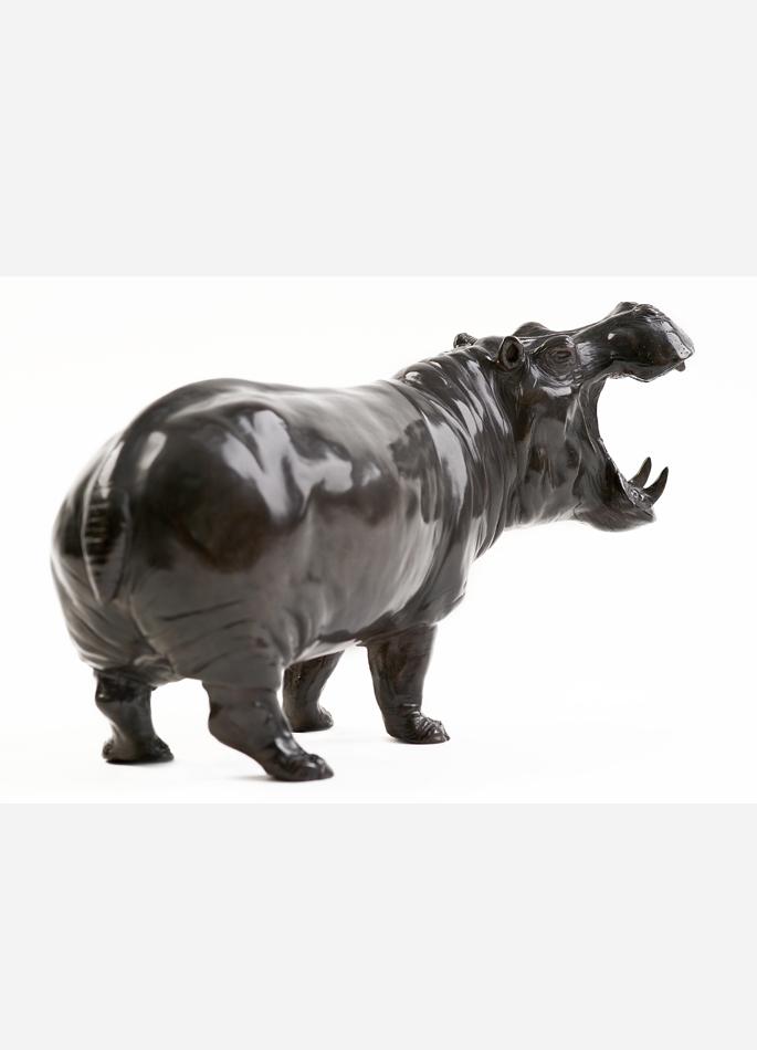Damien Colcombet Hippopotame gueule ouverte