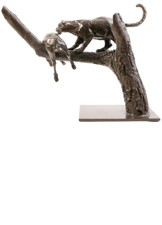 leopard-proie-damien-colcombet