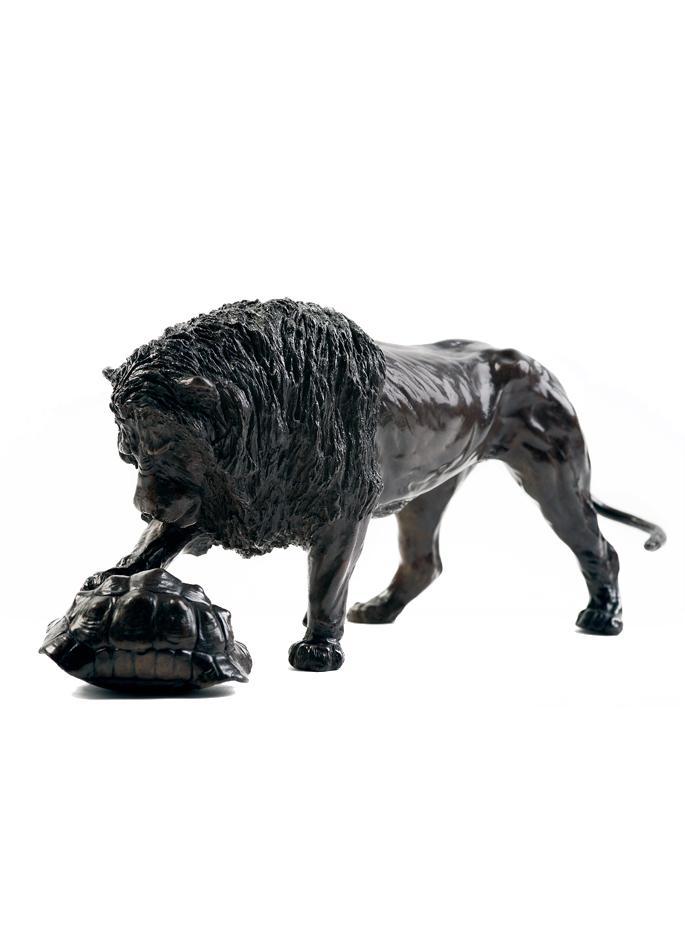 Damien Colcombet, Lion et tortue