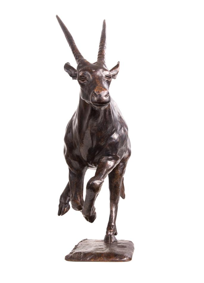 Damien Colcombet, Oryx au galop