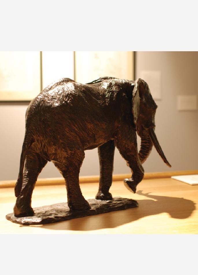 troisième-elephant-afrique-colcombet