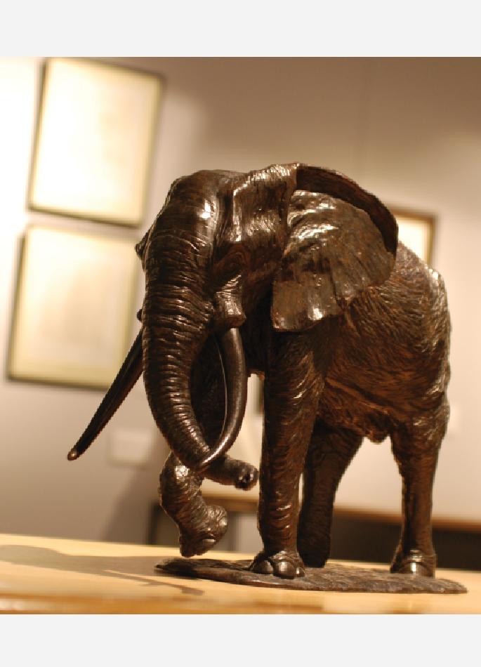 troisieme-elephant-afrique-colcombet