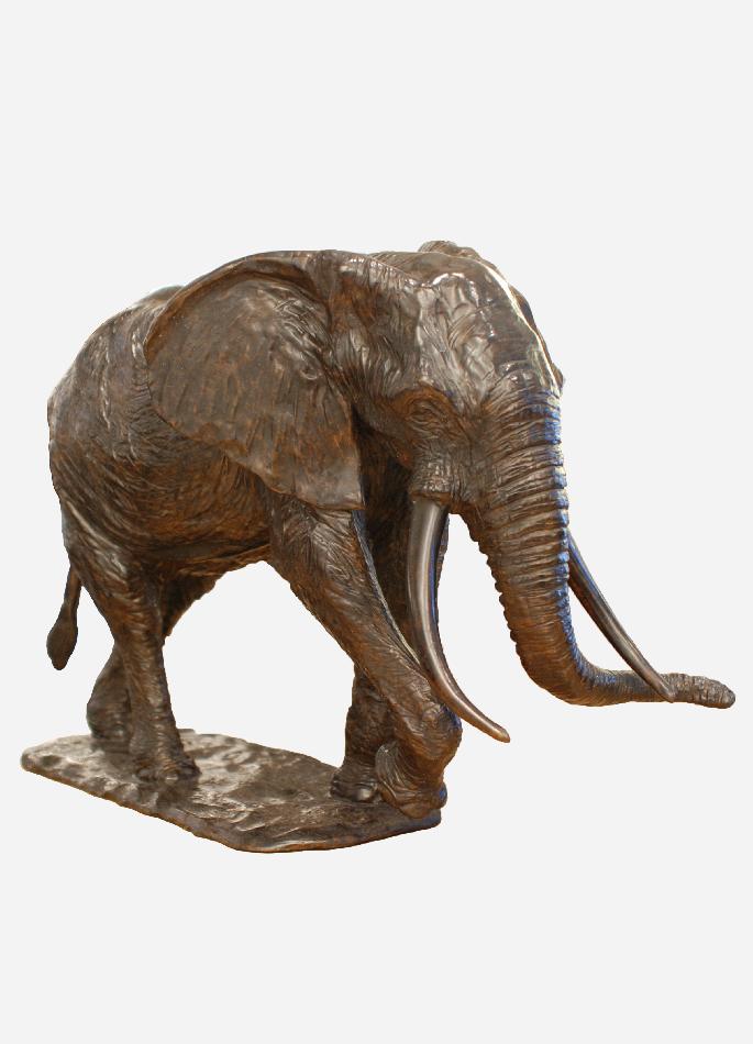troisième-éléphant-Afrique-colcombet