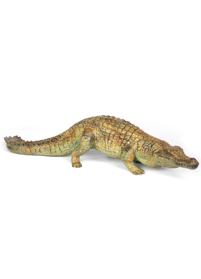 Crocodile du Nil en marche