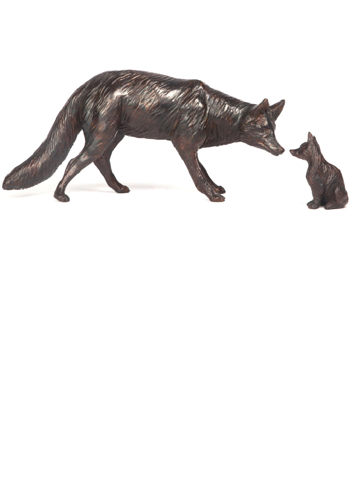 renard-damien-colcombet