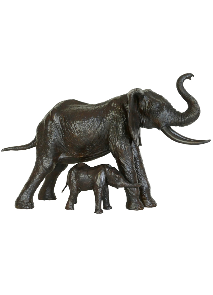 éléphante protégeant son éléphanteau