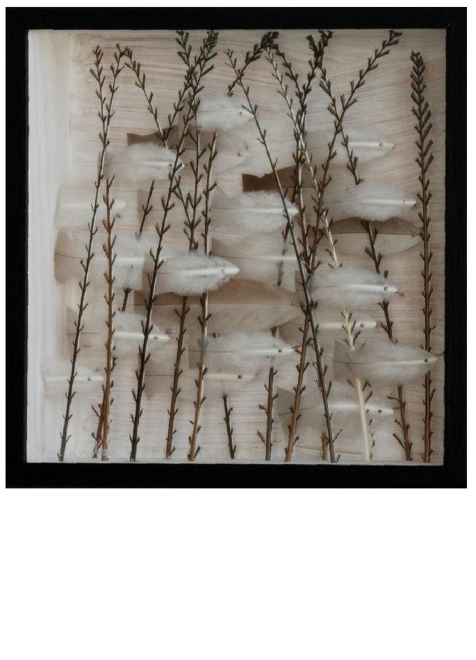 anne-limbour-invisible-savannah