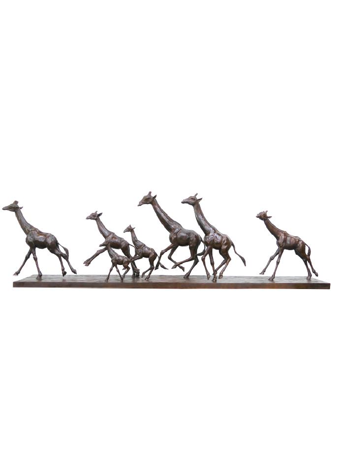 Les Girafes au galop de Damien Colcombet