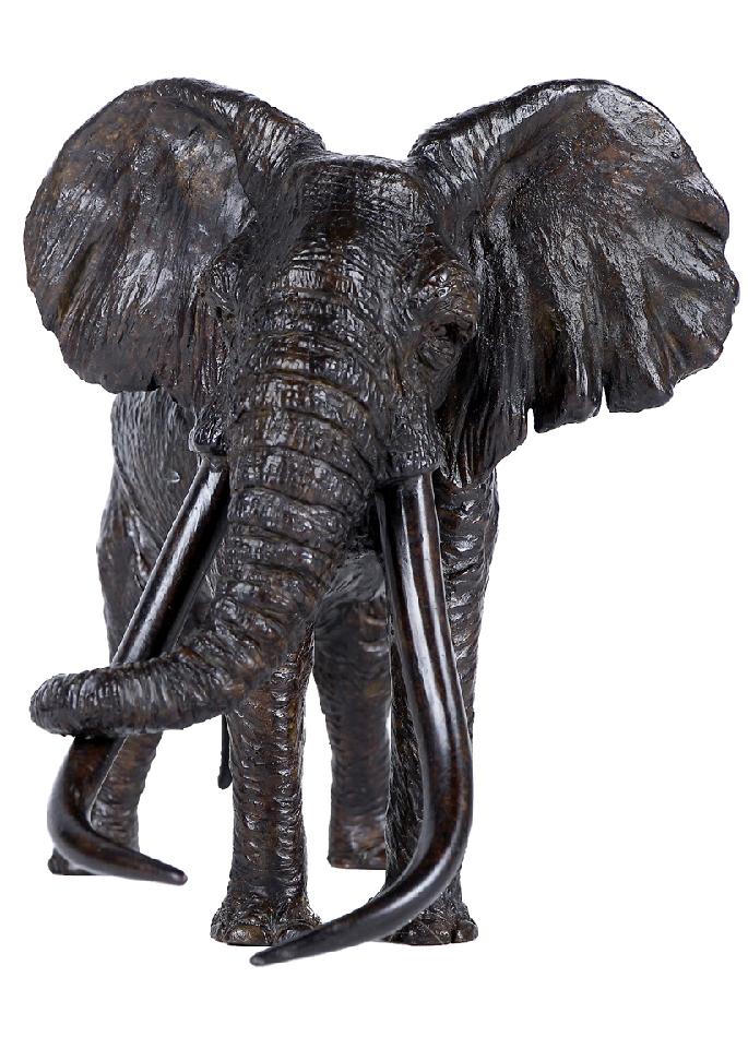 le patriarche - vieil éléphant d'Afrique