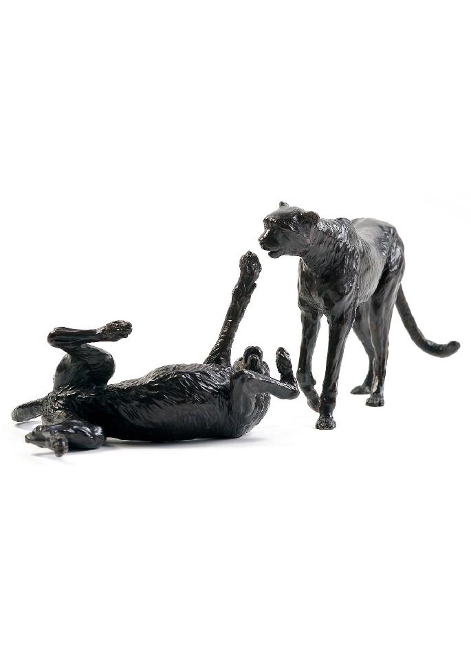deux-guépards-damien-colcombet