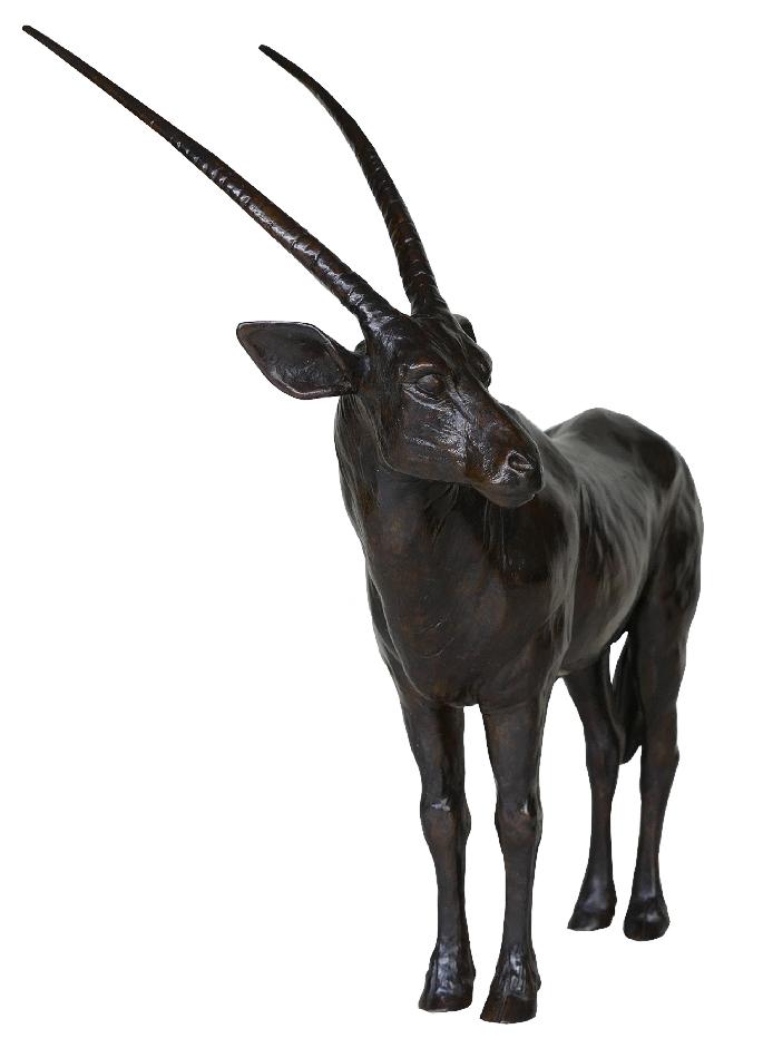 oryx-damien-colcombet