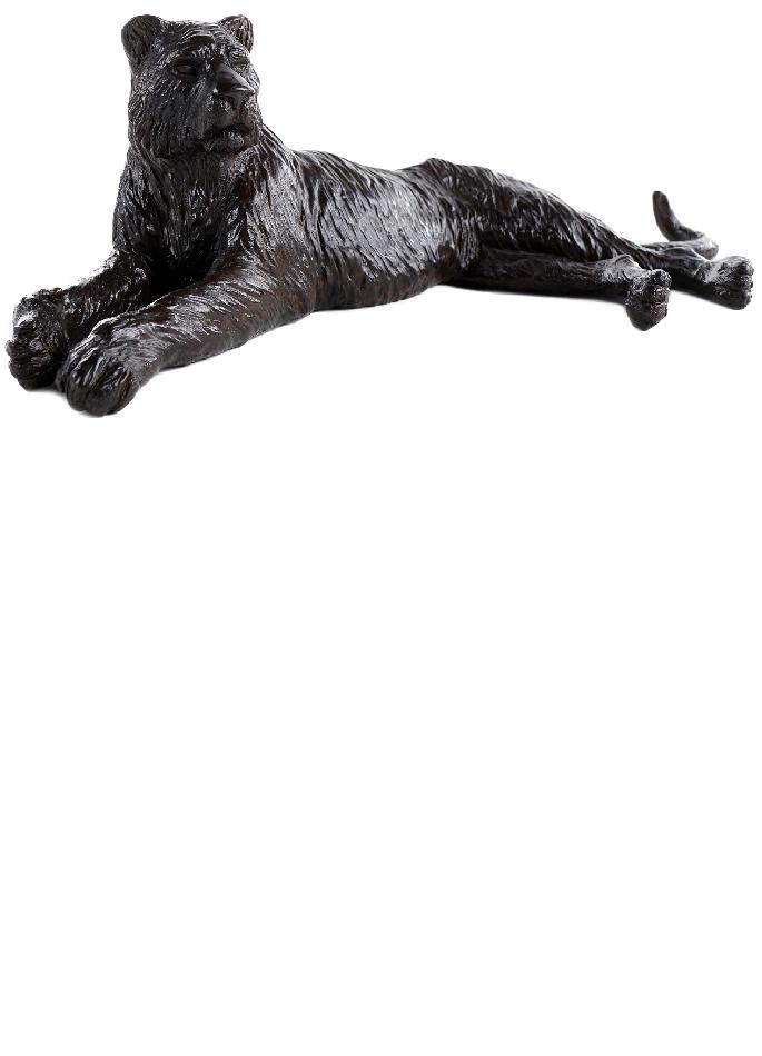 damien-colcombet-tigresse-couchee-1