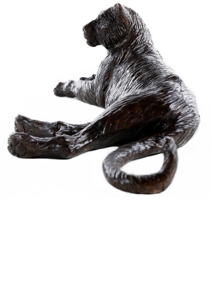 damien-colcombet-tigresse-couchee-2
