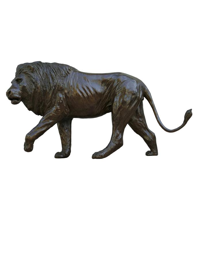 Damien Colcombet-Great Lion Walking