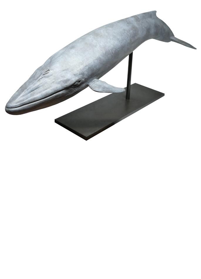 Damien Colcombet bronze Baleine bleue