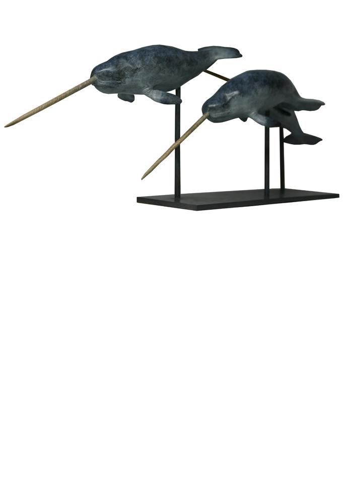 Damien Colcombet bronze animalier Les Narvals