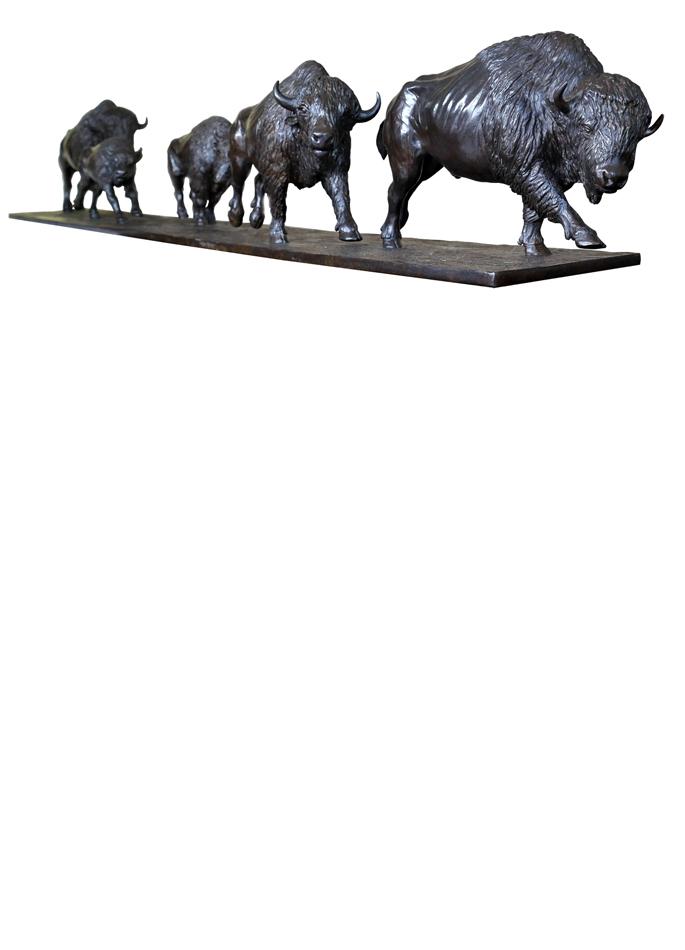 Damien Colcombet animal bronze Galoping American Bisons