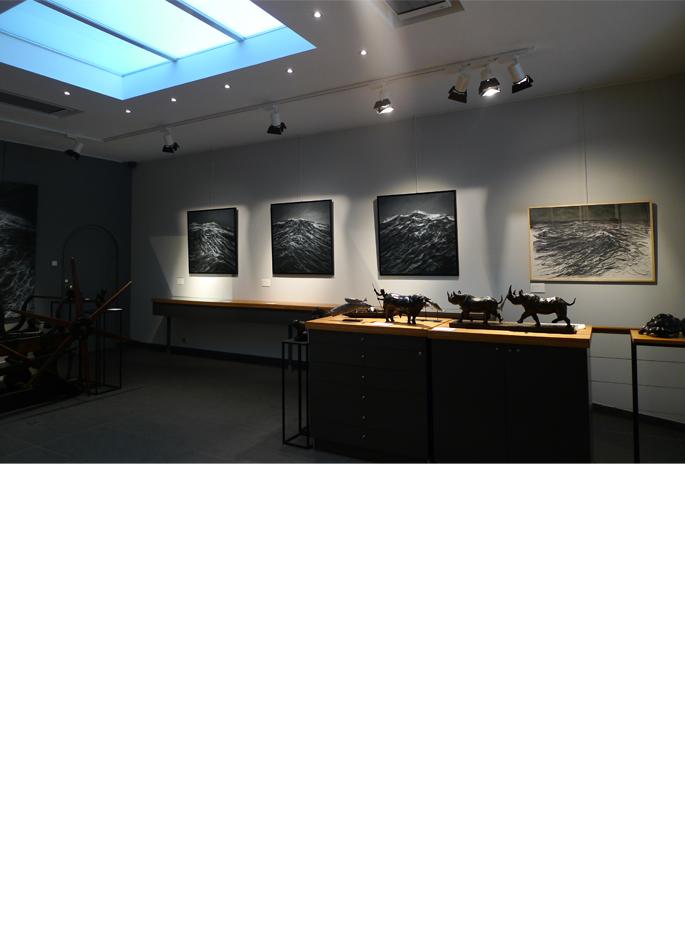 Exposition Franco Salas Borquez Centre Cristel Éditeur d'Art Saint-Malo